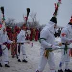 Défilé des Carnavaux 2010